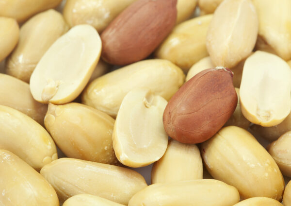 Bild på jordnötter
