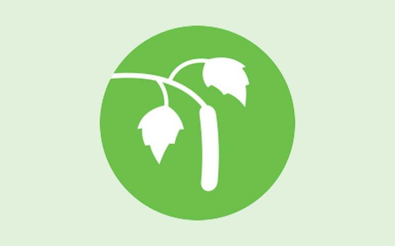 Bild för information och råd pollenallergi